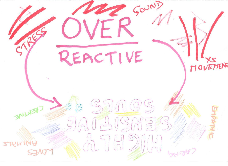 Highly Sensitive Souls - Rita Brown